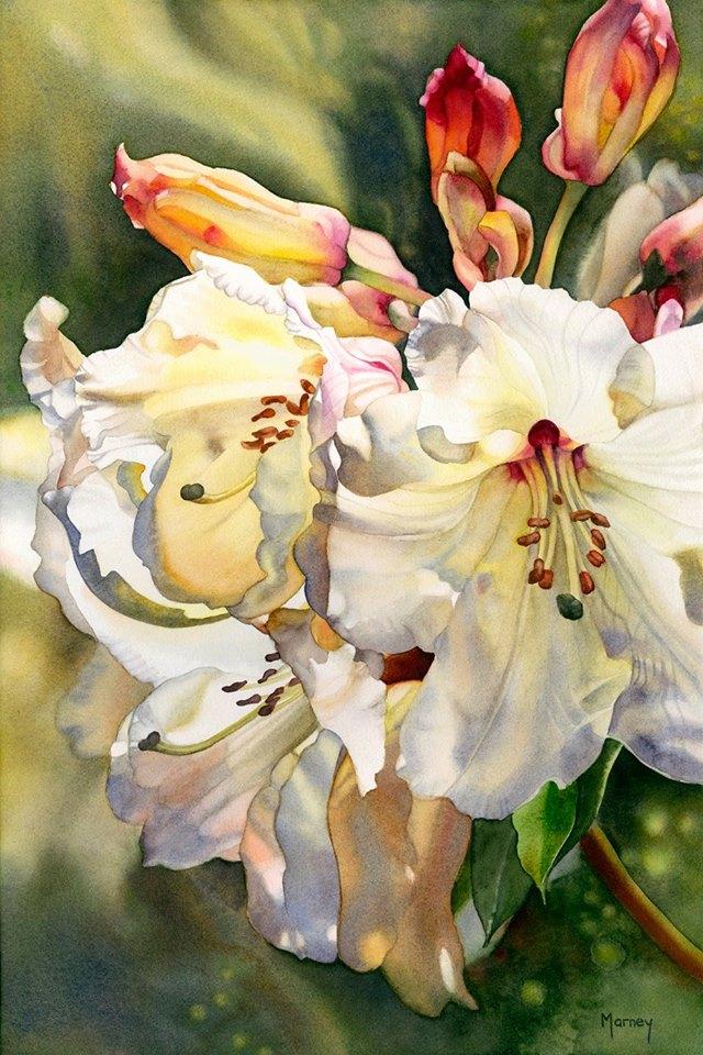 Цветок в акварели