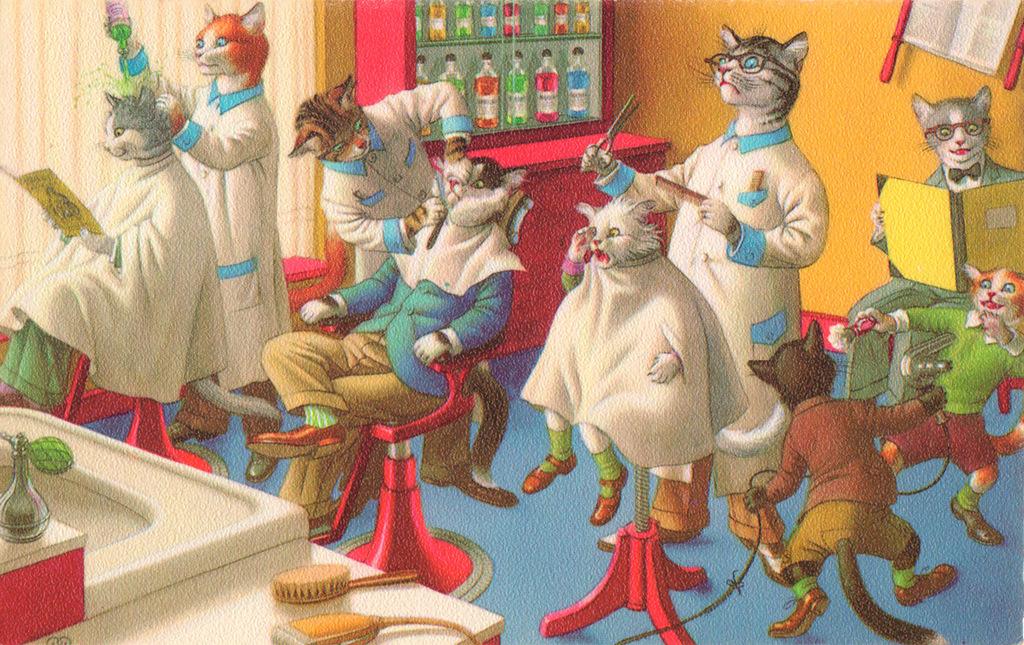 парикмахерская открытки с котом каменская фотоаппаратом
